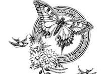 나비.butterfly
