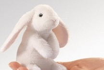 Bunny  / anything with rabbits.