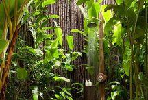 EcoHogar: Casas y Jardines