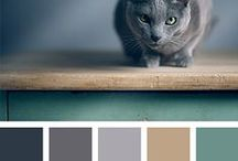 Színspi / Photos and inspirational color palettes from designseed.