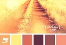 Palette / Color palette inspiration