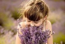 "Lavender Love- People / ""...with immediacy and intensity, smell activates the memory, allowing our minds to travel freely in time.""  Tom Robbins Jitterbug Perfume 1984"