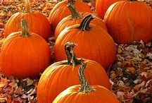 Fall and Halloween / by Kathi Hoffman
