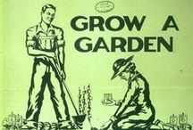 Garden Wisdom   / A community board to share garden wisdom, how to's, tips, ideas and suggestions around the garden.