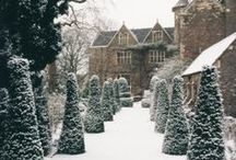 Winter Garden / Inspiration to keep your landscape and garden dreams alive during the frosty winter months.