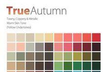 C. A. Autumn - Warm/True/Pure