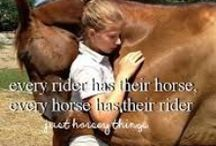 Just Horsey Things!