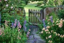 Gardenlicious! / Home-Garden