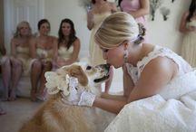 Wedding pets / by Heike Richard