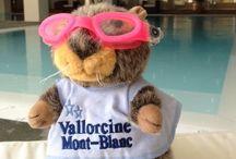 La Mascotte / par Résidence Vallorcine Mont-Blanc - Chamonix Mont Blanc