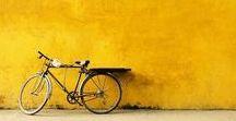 02. fietsen / bike