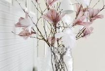 Easter/Spring decor inspiration