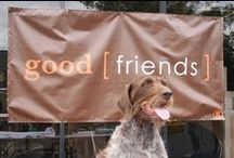 The Dogs / Man's best office friend