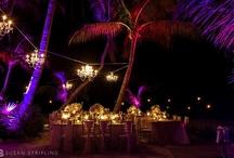 Luxury Wedding Venue: Little Palm Island