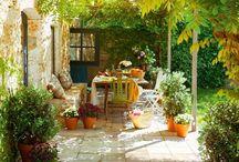 Dream garden ... (Garden / terrace / plants)