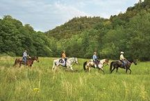Trail Riding Capital of the Southeast