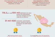 Infografías / Representaciones visuales con diseño ágil y sencillo, las cuales te ofrecen información estadística completa y concisa para llevar vida saludable, al tiempo que te permiten familiarizarte con el panorama de la salud y diversas enfermedades en México y el mundo.