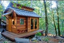 Cabin fever / Research has demonstrated that even brief interactions with nature can promote improved cognitive functioning and overall well-being.