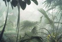 jungle-animalier style / interiors styles