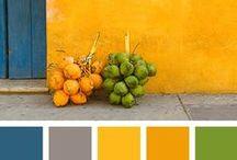 Desing colors
