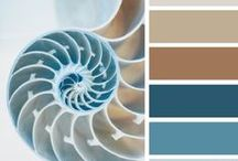 color palette-mood board / interior mood