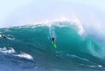 SURF NEWS / Keep up to date with WSL news!