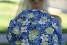 My Wedding Day / by Stephanie Hamlett Eubanks