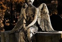 Angels  / by Lynn Stubbe