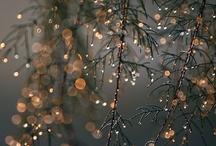 Let It Snow... / by Rebecca Morris
