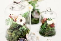 apothecary love / since i love/have apothecary jars, i need ideas all year long.