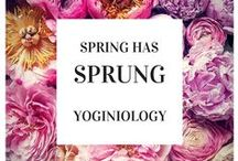 sprung {yoginiology} / celebrating all things fuzzy and pastel