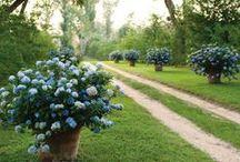 Beautiful Gardens / Id like my garden to look like this !
