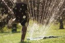 Irrigation / Uses for irrigation