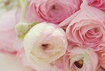 Weddingstuff 1 / Aankleding met bloemen/ bruidsboeket