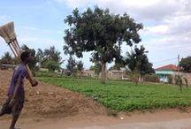 Foto dal Mozambico / Alcune foto scattate durante le missioni in Mozambico del progetto Il Teatro Fa Bene