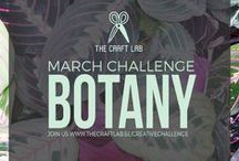 Botany / Are you spending too much time in front of the computer and want to get in touch with your creative side? We would love it if you joined us our 12-month creative challenge!  We will post a challenge each month and you can participate using whichever discipline you choose.