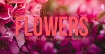 Creative Challenge August 2017 - Flowers / Are you spending too much time in front of the computer and want to get in touch with your creative side? We would love it if you joined us our 12-month creative challenge!  We will post a challenge each month and you can participate using whichever discipline you choose.