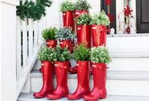 Big Bad Christmas / Add indoor plants to your holiday decor for an extra-special display.