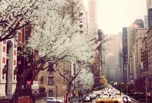 NYC / New York City Rocks