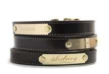 Dapper Dogs / No plain nylon leash or frilly pink thingies here.  Classic stuff for dapper dogs