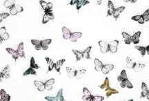 Prints / Beautiful Designs