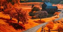 Autumn Travel / Autumn travel inspiration, autumn travel destinations, autumn travel packing tips, autumn travel Europe, autumn travel Canada, autumn travel U.S.A.