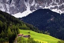 Alpler ve diğerleri