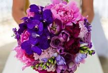♥ Bouquets roses / violets ♥