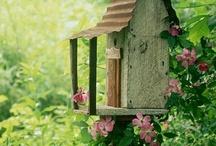 Birdhouse / by HB-LENRUHA Zsóka Vasvári