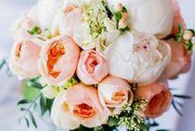 TLC - Floral Favorites
