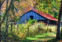 Beautiful Barns / There is just something about Barns! / by Linda Salvatore