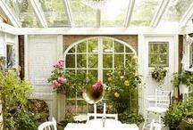 Garden / Gardening / by Zenon Ziembiewicz