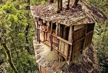 As melhores casas de árvore.