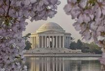 The Capitol City / Washington, D.C.